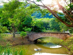 Stone bridge crosses a stream near the mountain. Old vintage brick bridge over the river in the park with beautiful green landscape.