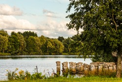 Stone bridge pillars ruins in Daugavas river water during sunny summer day framed by green and yellow grass and green trees. Scenic photo of pier remains in water. Sunny day at riverside.