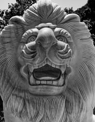 Stone calving of lions head and face with its mane in black and white.