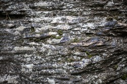 Stone covered with moss. Rock in the relict forest. Background of natural stone. Rocky breed. Natural object.