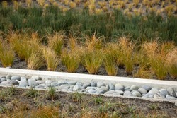 Stone drainage ditch in a garden with stripes of grass bush varieties