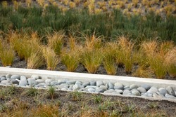 Stone drainage ditch in a storm run off area, planted with a variety of grass bushes