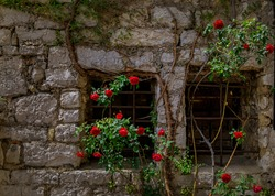Stone exterior of old buildings with flowers on the streets of Eze Village, picturesque medieval city in South of France along the Mediterranean Sea