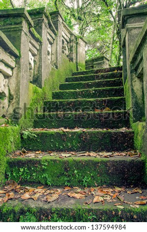 stone forrest stairs - stock photo