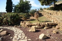 Stone garden with yukka and agave plant