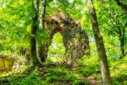 Stone gate of forest castle ruins