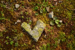 stone heart in nature. Art in the mountains. A heart that lies on the ground in the Swiss mountains. Rock heart nature