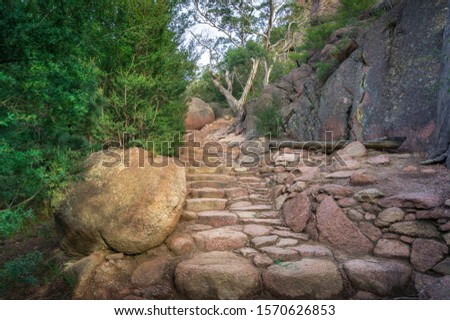 Stone lined path with steps in national park. Tourism infrastructure and hiking paths  #1570626853