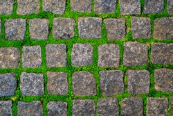 Stone or rock old road covered by green moss and grass texture background