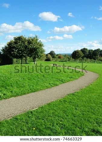 Stone Path in a Lush Green Park