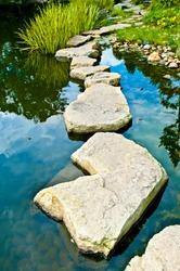 Stone path in water garden