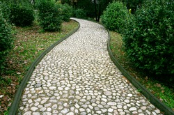 Stone pathway in the park. Stone path made from a pebble. Path surround with green plants.