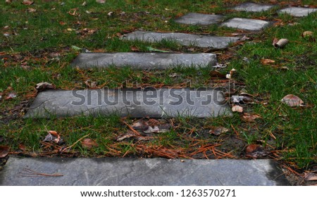 Stone Pathway, Tile Pathway, Fall Season #1263570271