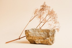 Stone podium with dried flowers for displaying products or cosmetics. Eco trends. Place for text