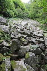 Stone river (called also stone run, stone stream or stone sea ) on mountain Vitosha, near upper Aleko's waterfalls.