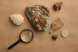 Stone samples and loop flat lay at geological laboratory. Geology rock laboratory. Laboratory for analysis of geological soil materials, stones, minerals, rocks samples for researchers and students.