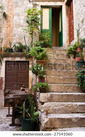 Stone staircase with plants in a medieval city with cobblestone pathways