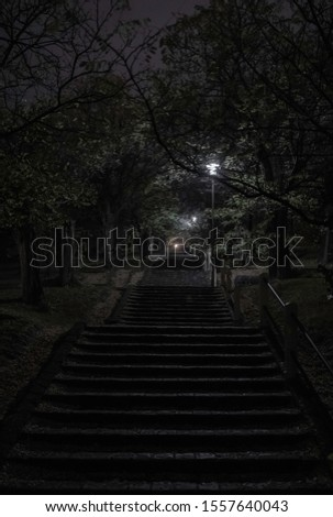 Stone stairs at night in a park. Mystical scary vibe. Nobody on the picture. Lamps and trees on the side.