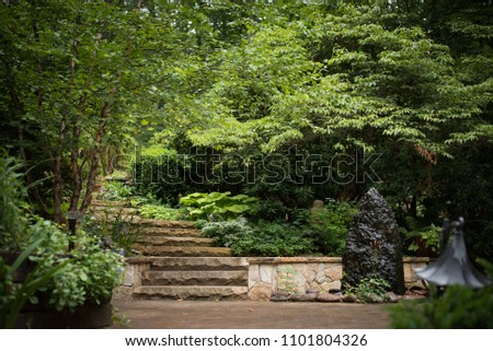 Stone Stairs in a backyard garden with lush greenery. #1101804326