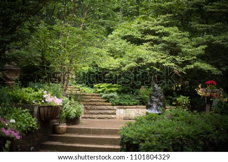 Stone Stairs in a backyard garden with lush greenery. #1101804329