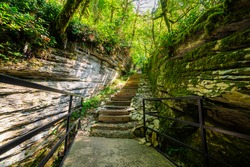 Stone stairs in mysterious forest. Walk path trail for hiking tours.