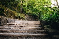stone stairs in the beautiful green Japanese garden