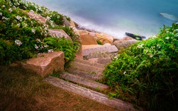 Stone stairs to the beach, view from the top of the shore bank covered with wild rose bushes