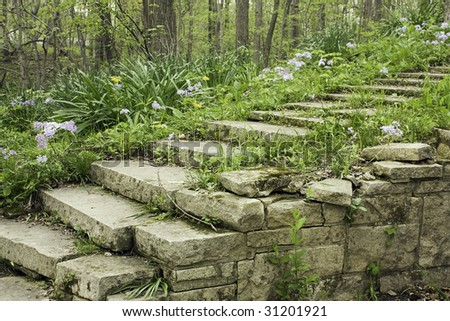 Stone Stairway And Wall Lined With Flowering Phlox On A Shady ...