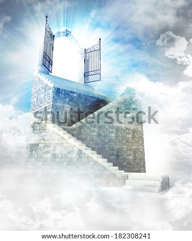stone stairway  with gate entrance on top illustration