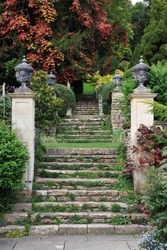 Stone Steps in a Peaceful English Landscape Garden