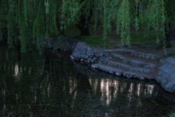 stone steps laid by people at the reservoir, Twilight in the park by the lake, reflection of the long-year willow in the water