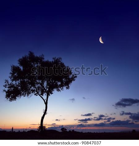stone, sunrise, sunset, landscape, top, sea, ocean, - stock photo