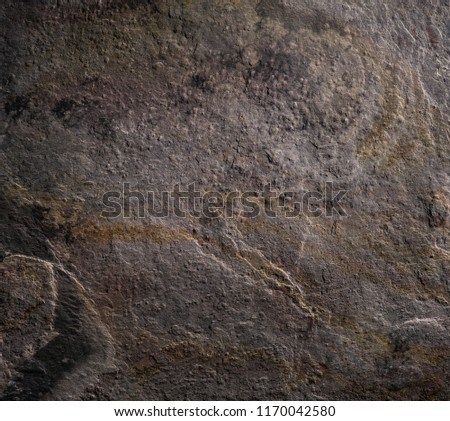Stone texture background. Detailed natural structure in close up. Subdued autumnal taupe tones.  #1170042580
