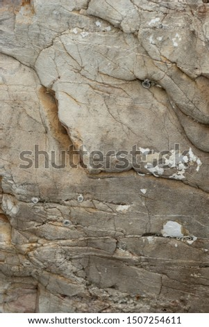 Stone texture , Stone  background,close up detailed texture of stone
