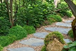 Stone walkway , Natural surroundings, large trees to shade, small rocks, located in the center of Bangkok, Thailand.