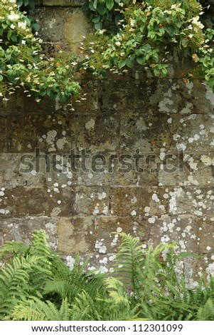Stone Wall Background With Foliage Edges