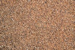 Stone wall bedrock texture background
