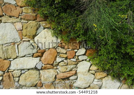 Stone Wall In Garden Stock Photo 54491218 : Shutterstock
