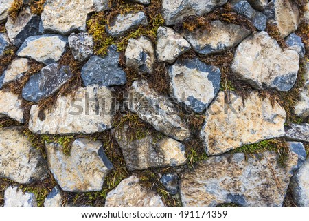 Stone wall overgrown with moss #491174359