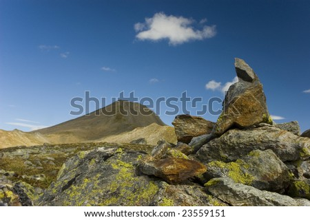 Stone with lichen - stock photo
