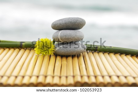 Stones and bamboo grove with daisy flower on mat - zen concept