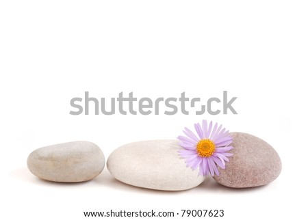 Stones and flower on a white background