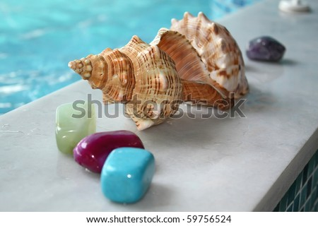 stones and shell in the SPA
