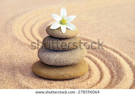 Stones balance and flower #278596064