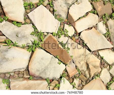 stones floor in garden background