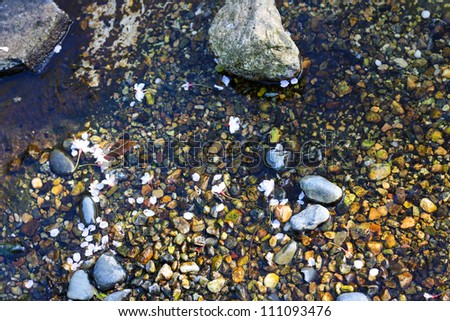 Stones in a calm water