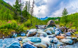 Stones in the creek in a mountain valley. Creek valley in mountains. Mountain valley creek flow