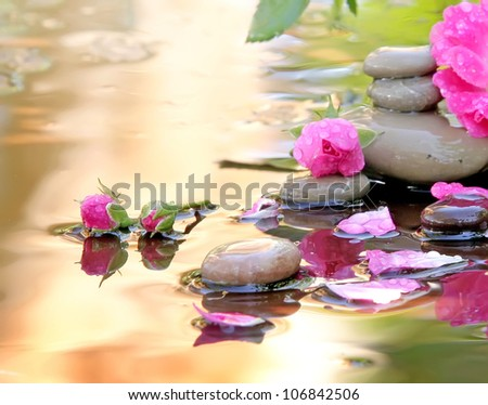 Stones of Spa and flowers of a rose lie in water the waters covered with drops