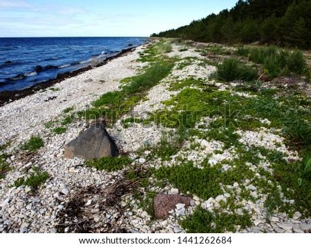 stones on the seashore, rocky seashore #1441262684