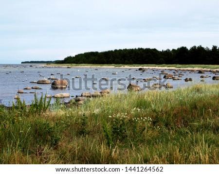 stones on the seashore, rocky seashore #1441264562